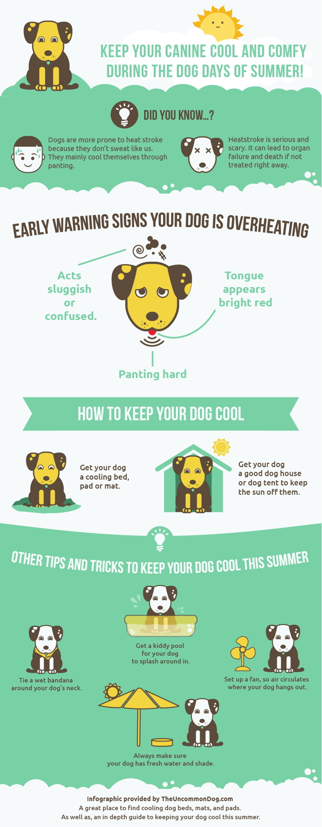 the uncommon dog tips on heatstroke for dogs allen texas summer